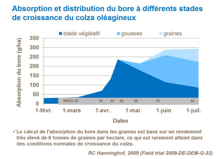 Suivi des Colzas  2020 - Page 17 Fr-absorption-et-distribution-du-bore-a-differents-stades-de-c