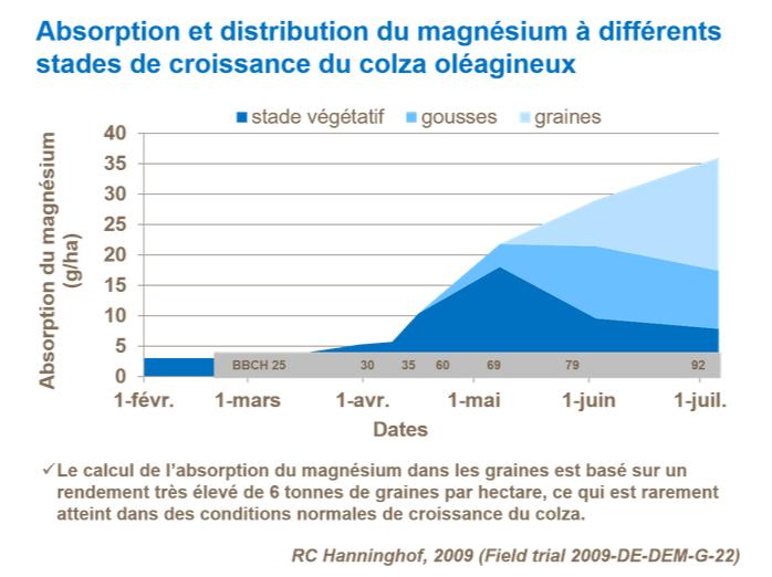 Suivi des Colzas  2020 - Page 17 Fr-absorption-et-distribution-du-magnesium-a-differents-stades-d